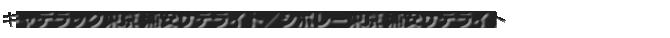 キャデラック東京 浦安サテライト/シボレー東京 浦安サテライト